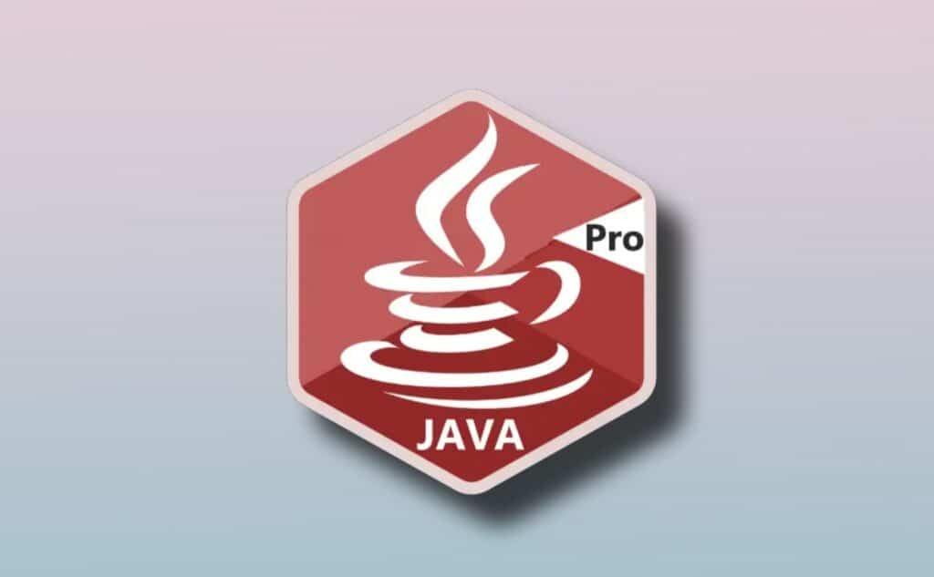 Learn Java Programming Pro Apk